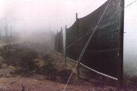 Captanieblas en El Tofo (norte de Chile)